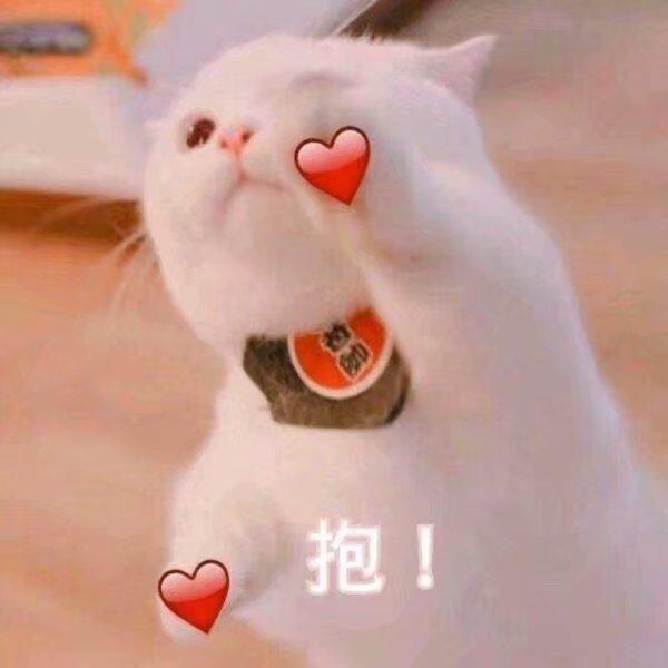 【江湖百晓生】【附四级图纸2】宅邸系统玩转琵琶——视频攻略第五期《青花瓷》