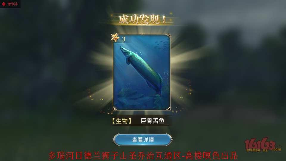 3、海象鱼5.jpg