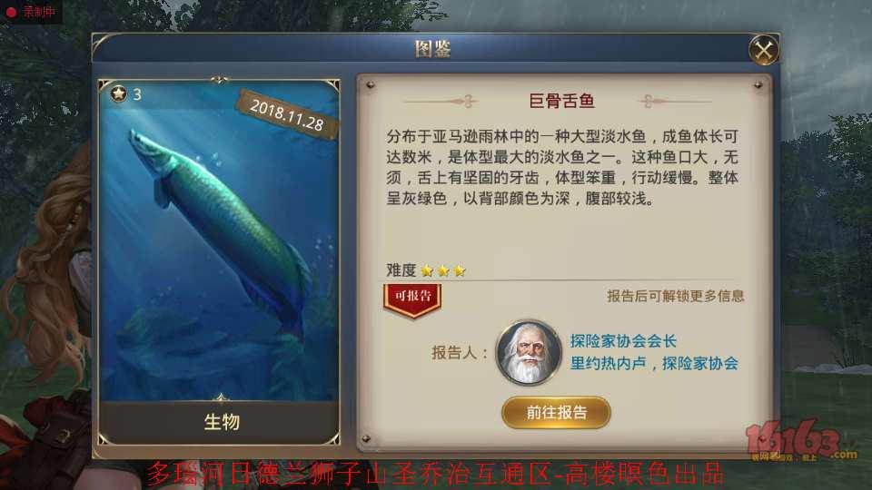 3、海象鱼6.jpg