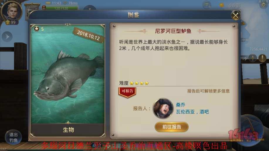 2、尼罗河巨型鲈鱼3.jpg