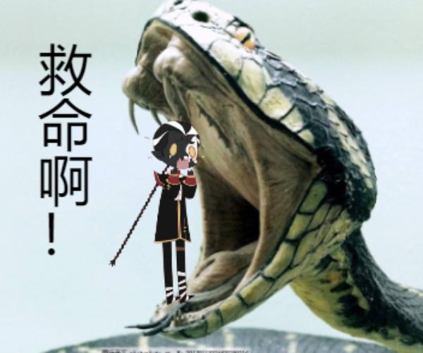 主题:蛇的嘴为什么这么黑昵称:萧不乐