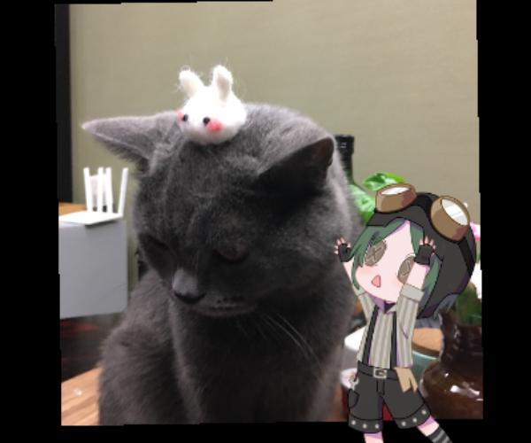 主题:小特、胖丸and兔砸昵称:太乐乐鸡汁