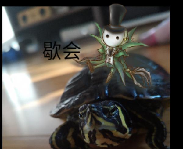 主题:龟上杰克昵称:lulu63