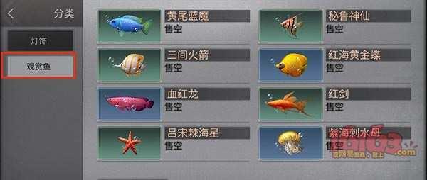 观赏鱼1.jpg