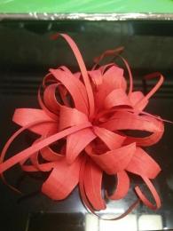 花花最可爱了