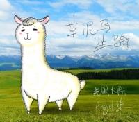 【大触团】光明大陆草泥马(羊驼)坐骑