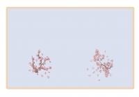 【多图】樱桃成长记录