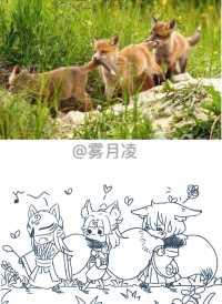 【和崽崽们相遇的周年纪念日】3只小狐狸