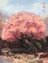 秋日盛景,相约平安京共赏。一周年,你我共同的回忆